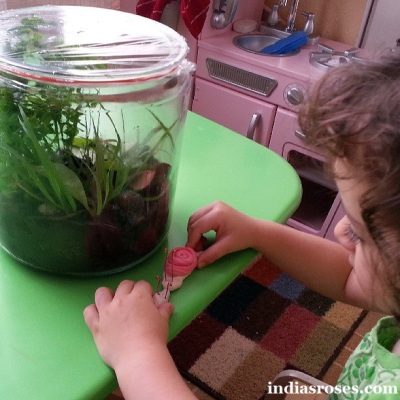 A weeks worth of snail activities for children: indiasroses.com